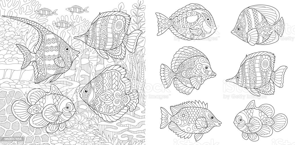 Collection of tropical fishes of different species vector art illustration