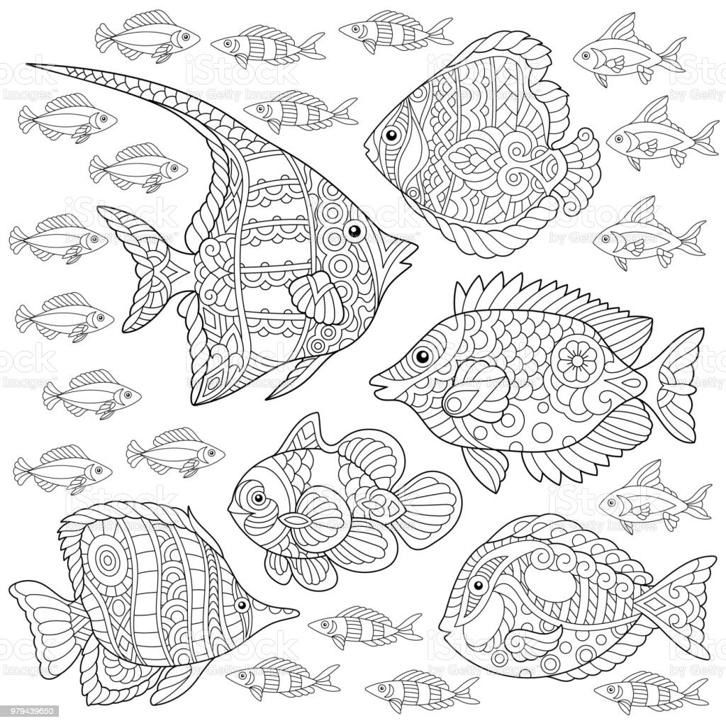 Collection of tropical fishes. vector art illustration