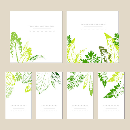 Collection of universal trendy cards.