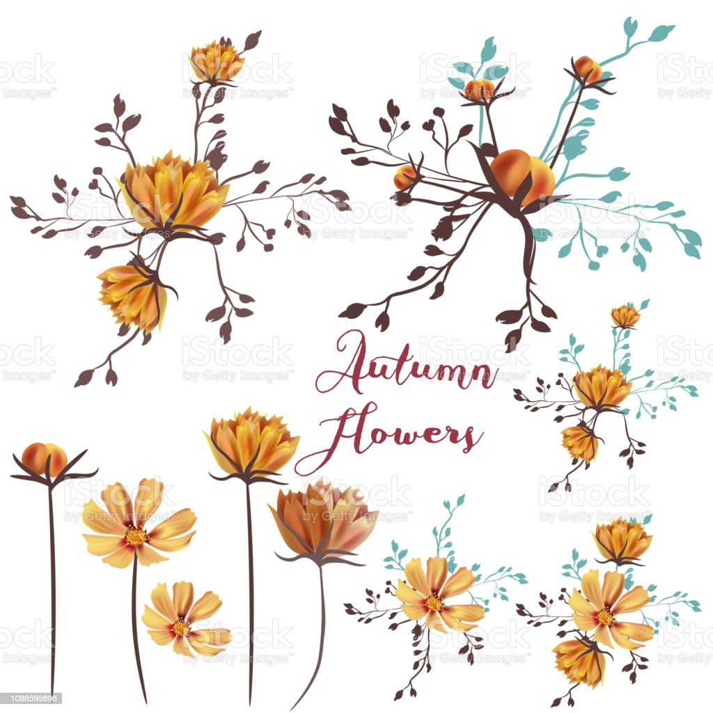 Collection Of Vector Autumn Flowers For Design Stock Illustration
