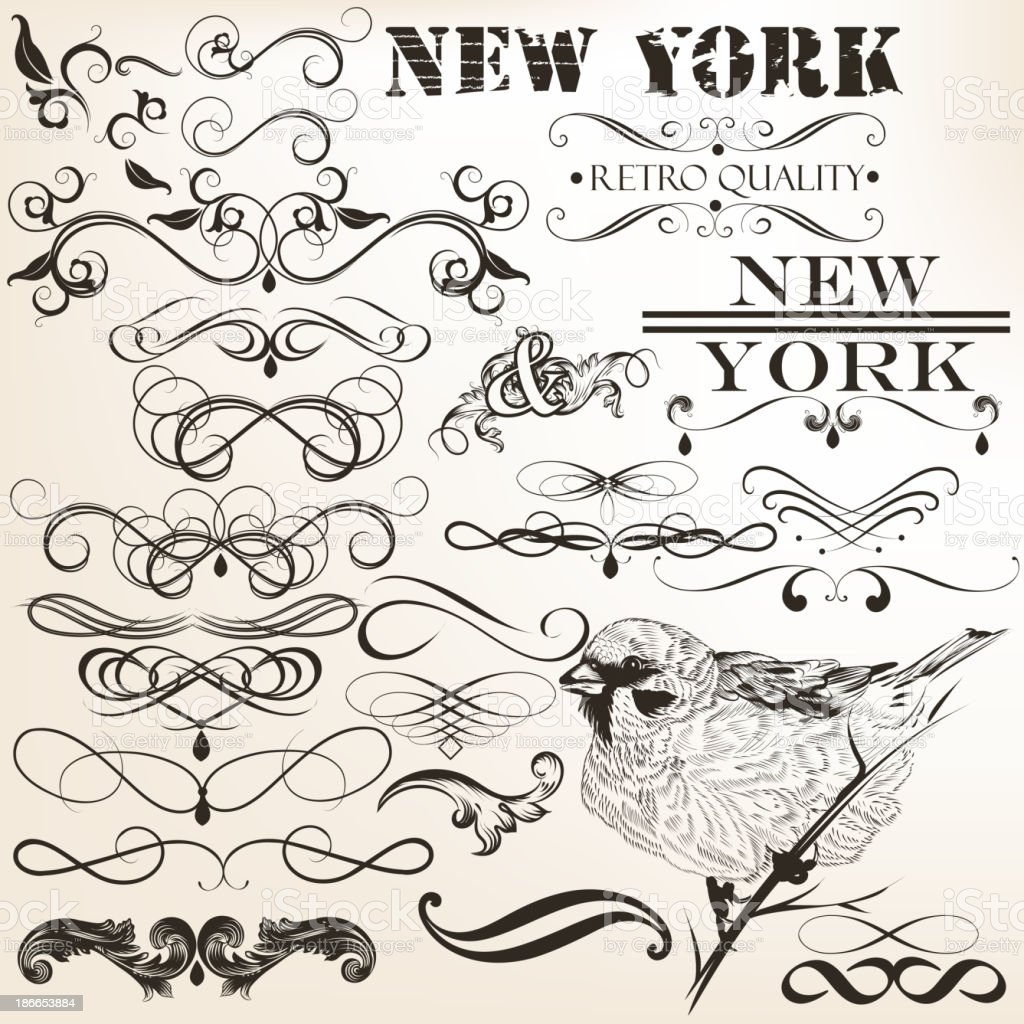 Collection of vector calligraphic design elements royalty-free stock vector art