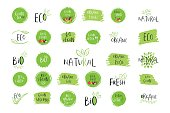 Collection of vector eco, bio green  or sign. Vegan, raw, healthy food badge, tag for cafe, restaurants, products packaging. Hand drawn leaves, branches with lettering. Organic design.