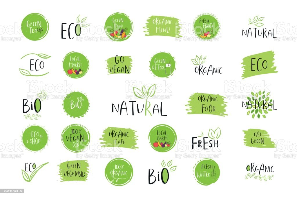 Collection of vector eco, bio green  or sign. Organic design vector art illustration