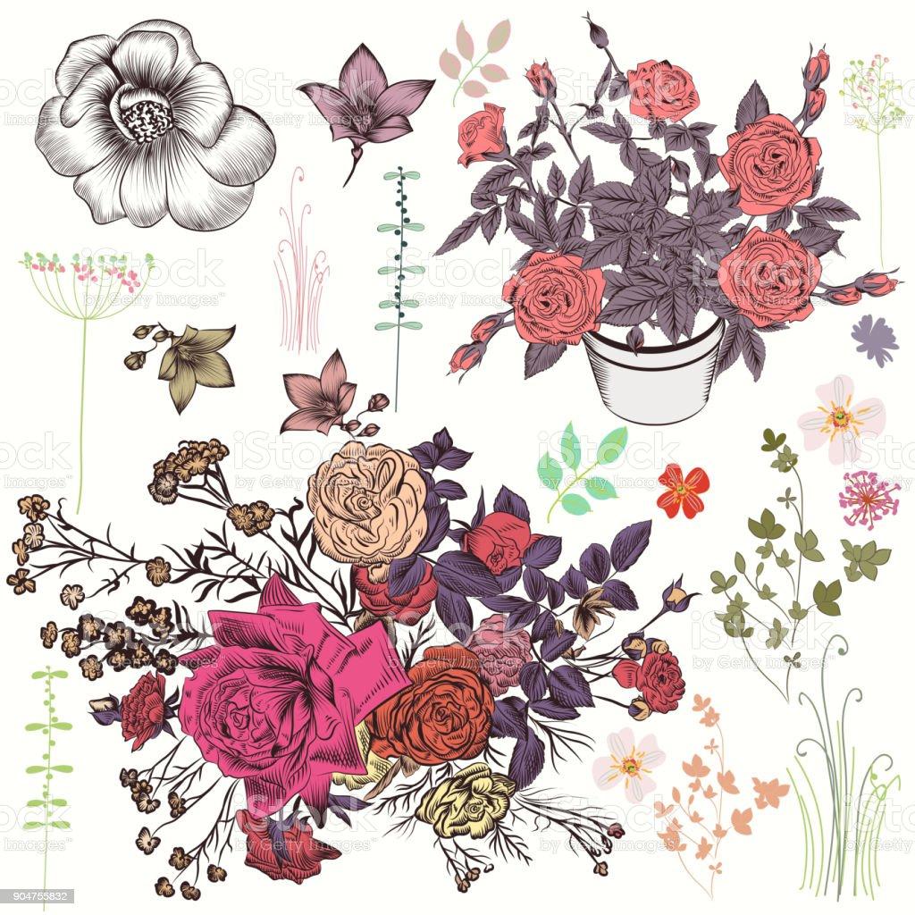 Ilustración de Colección De Vector De Mano De Flores Dibujados ...