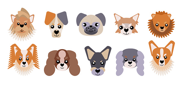 Collection of vector icons of portraits of small dogs drawn in a flat style. A set of cute funny faces of small dogs. Vector illustration in cartoon style.