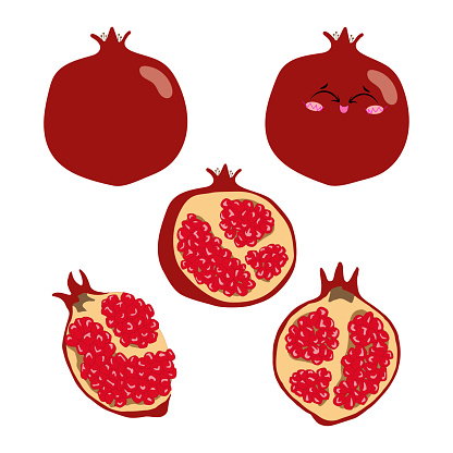Collection of vector illustrations of pomegranate whole, half and slices in flat style. Set of red pomegranate on a white background for design.