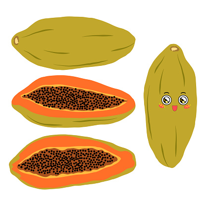 Collection of vector illustrations of whole and half papaya in flat style. Bright papaya on a white background for design.