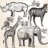 Collection of vector savanna animals