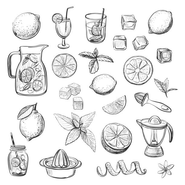 collection of vector sketches lemonade drink - alcohol drink drawings stock illustrations