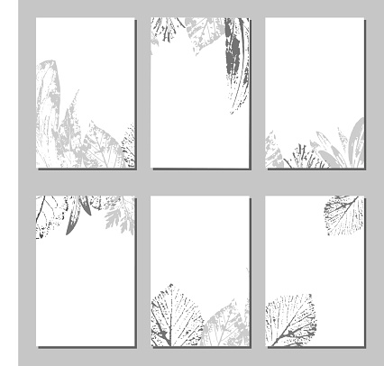Collection of vector template label, visit cards, square greeting cards and banners with home plants, wild flowers and herbs.Business set of design templates Layout, mockup design for cosmetics.