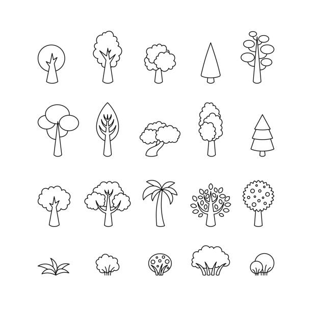 collection of vector tree icons. template for logo, web design, advertising - palm tree stock illustrations