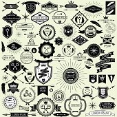 Collection of vector vintage labels and stamps for design