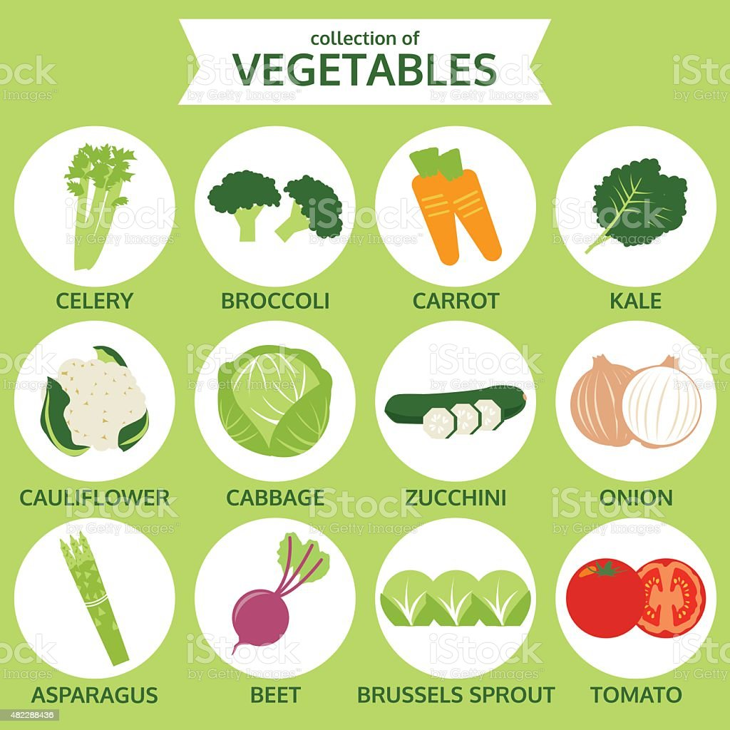 collection of vegetables, food vector illustration, icon set one vector art illustration
