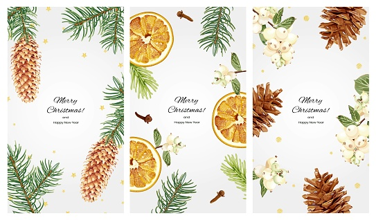 Collection of vertical Christmas backgrounds for social networks with space for text. Spruce branches, cones, snowberry, dried oranges, cloves and golden confetti.