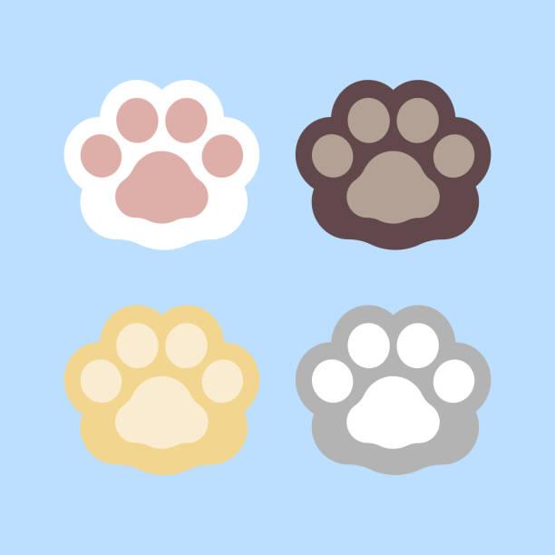 stockillustraties, clipart, cartoons en iconen met inzamelingsreeks van leuke hondskat en hondpootvoetafdruk - miauwen