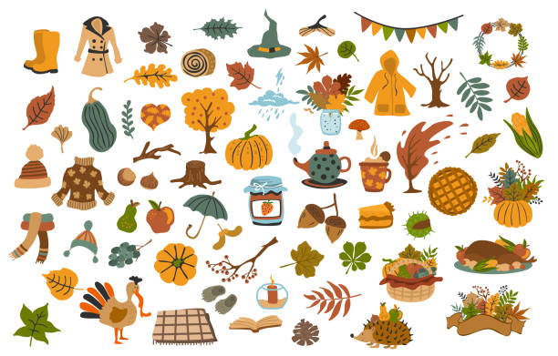 collection set  of cute drawn autumn fall thanksgiving seasonal items collection set  of cute drawn autumn fall thanksgiving seasonal items harvesting stock illustrations