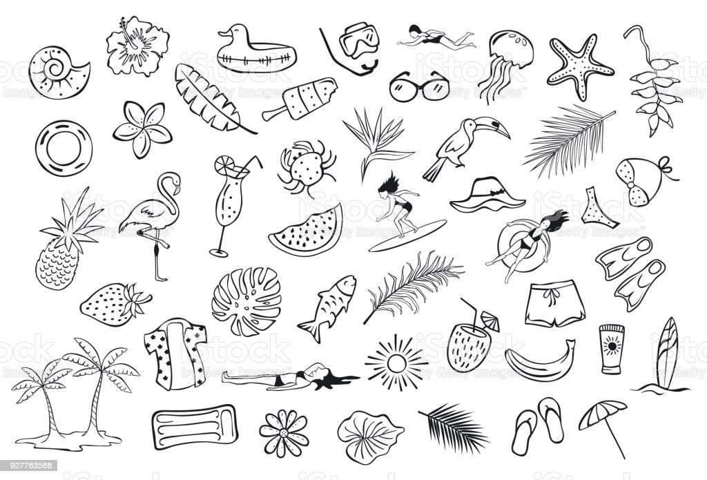 collection set of hand drawn outlined summertime item objects  sketchy doodles, flamingo, toco toucan pineapple watermelon surfer fish leaf palms people floats clothers vector art illustration
