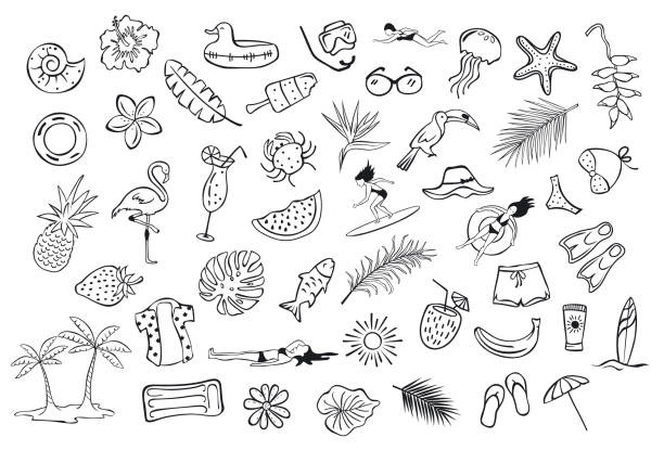 illustrazioni stock, clip art, cartoni animati e icone di tendenza di collection set of hand drawn outlined summertime item objects  sketchy doodles, flamingo, toco toucan pineapple watermelon surfer fish leaf palms people floats clothers - nuoto mare