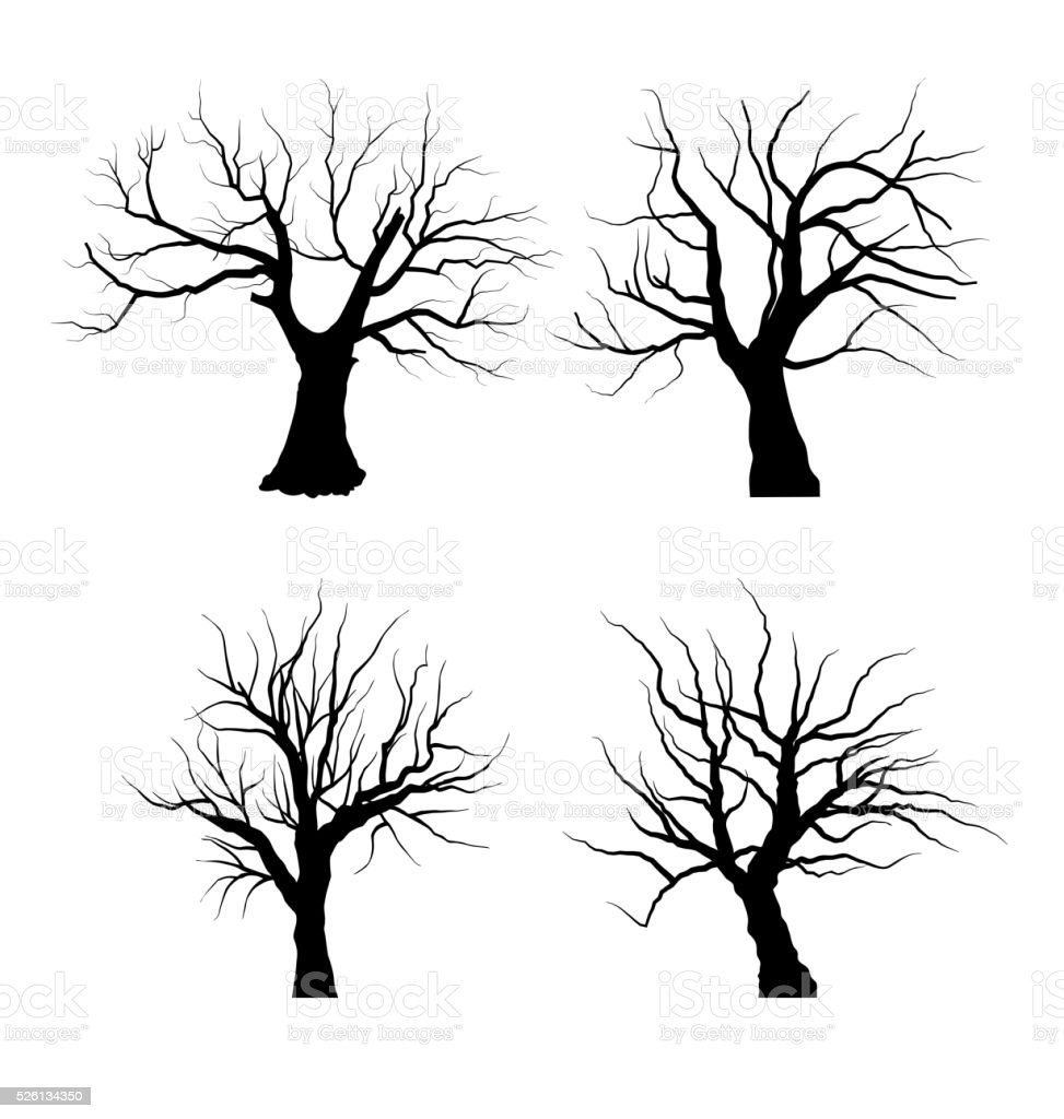 Collection Set of Trees Silhouettes isolated vector art illustration