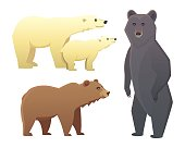 Collection with different cartoon bears isolated on white background. Vector broun and black american bear. Set Wildlife or zoo grizzly.