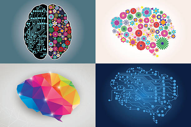 Collections of four different human brains, left and right side vector art illustration
