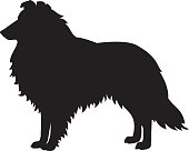 Collie Dog Vector Silhouette