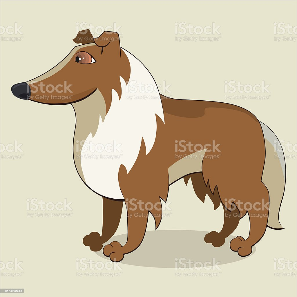 Collie royalty-free stock vector art