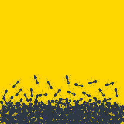 Colony of marching ants contour banner on yellow background