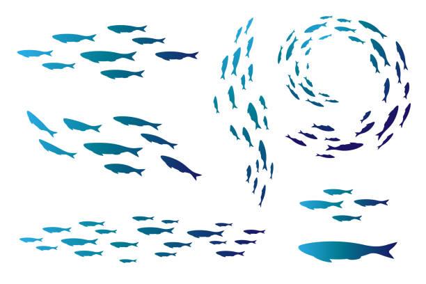 スイミング海や水族館の植民地を魚します。silhouttes のグループ。 - 魚点のイラスト素材/クリップアート素材/マンガ素材/アイコン素材