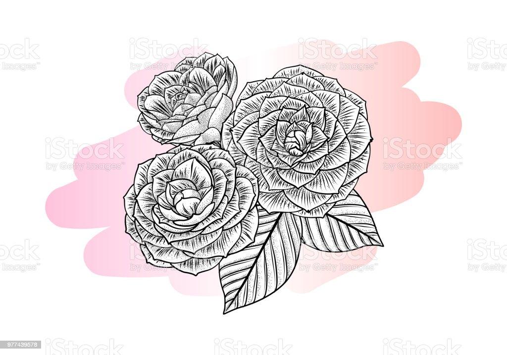 Couleur Et Noir Dessin Graphique Fleurs Et Feuilles Dune Plante