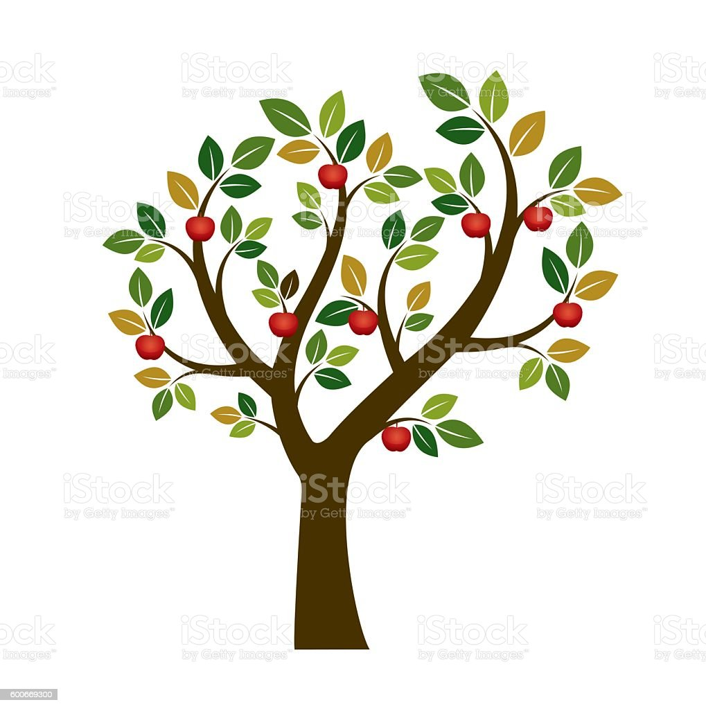 Color Apple Tree Vector Illustration Nature And Garden ...