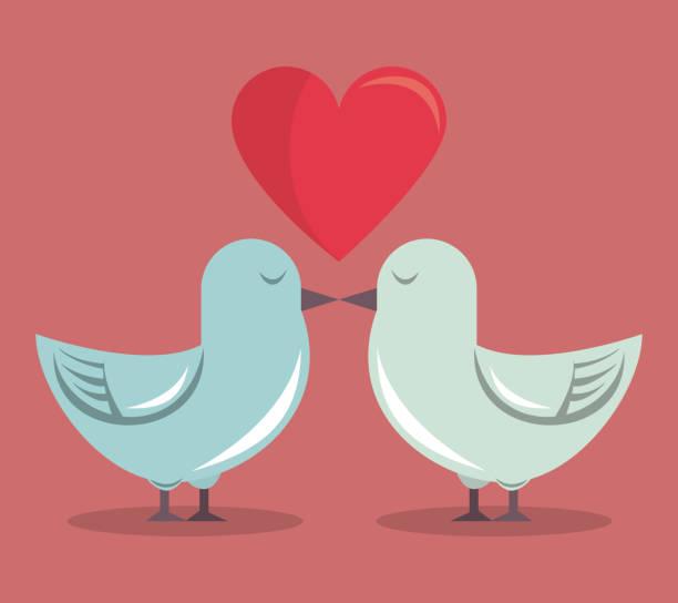 ilustrações de stock, clip art, desenhos animados e ícones de color background with heart and couple of pigeons - bills couple
