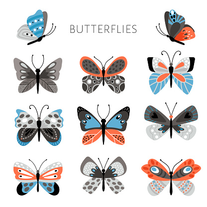 Color butterflies and moths illustration. Vector pretty colorful butterfly set for kids, tropical spring insects in blue and pink colors