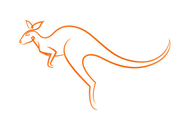 Color graphic flat symbol of Australian jumping wild animal kangaroo, dynamic calligraphic linear silhouette, for icon, sign, print or packaging. Vector illustration isolated on background. Color graphic flat symbol of Australian jumping wild animal kangaroo, dynamic calligraphic linear silhouette, for icon, sign, print or packaging. Vector illustration isolated on background. kangaroo stock illustrations
