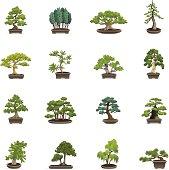 Color Icons - Bonsai Trees