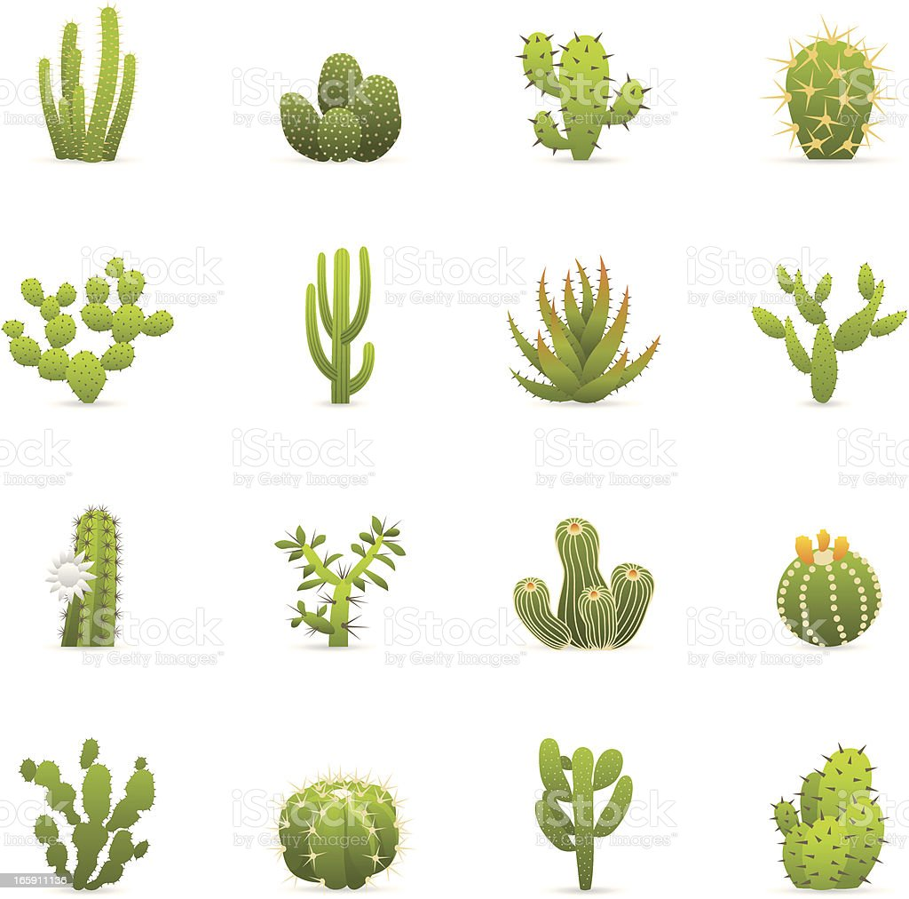 Color Icons - Cactuses Cacti vector art illustration