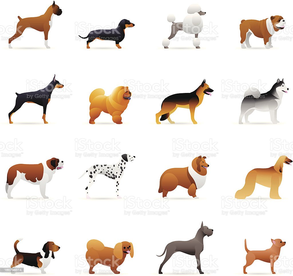 Color Icons - Dogs vector art illustration