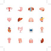 Color icons representing different human organs.