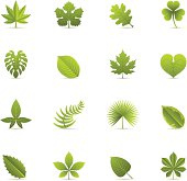 Leaves color icons.