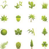 Nature Green Plants color icons.