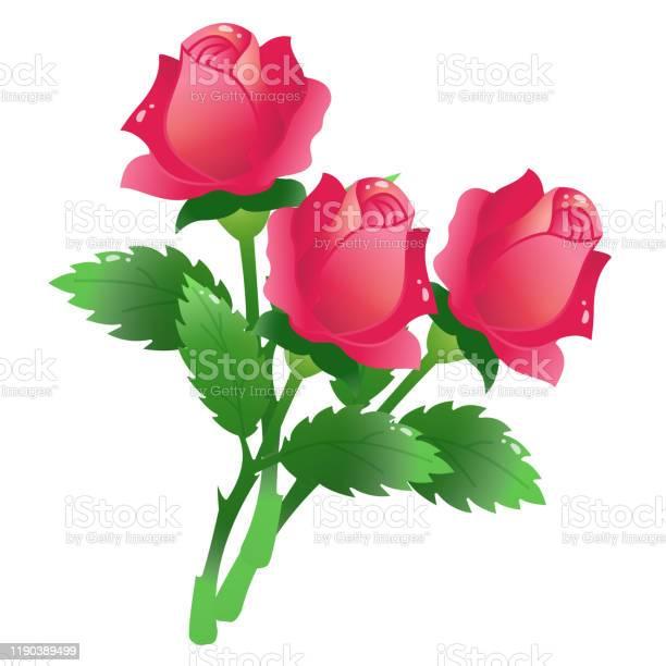 Color image of bunch of scarlet roses on white background flowers vector id1190389499?b=1&k=6&m=1190389499&s=612x612&h=uhzz8tkcrsviry0kz1lmijcqlh8nfbnjr idq2ffwjk=