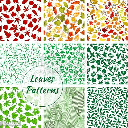 Trees foliage patterns. Green, yellow, red, orange, purple leaves of oak, maple, brown, elm with leafy branches. Isolated vector leaf silhouette outline icon