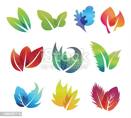 Vector illustration of the color leaves icon set.