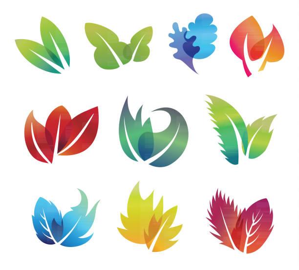 Color leaves set vector art illustration