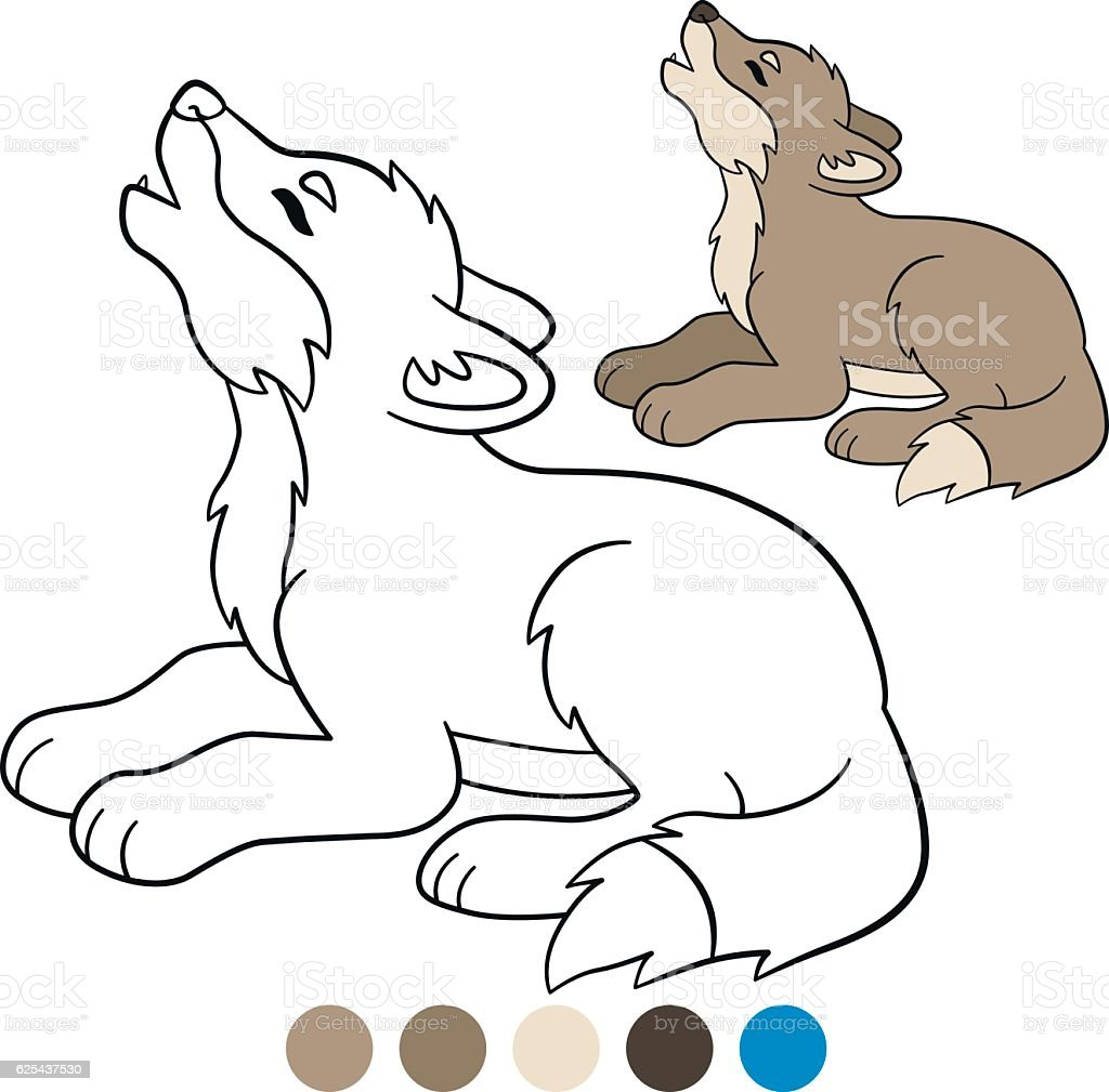 color me wolf little cute baby wolf howling stock vector art