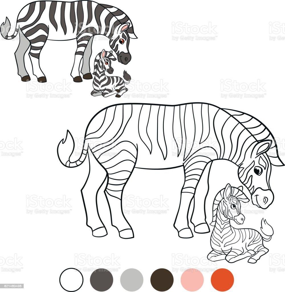 Ilustración de Me Color Cebra Cebra Madre Con Su Lindo Bebé y más ...