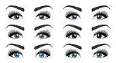 Color of human eyes. Set of open female eyes with beautiful long eyelashes and stylish eyebrows isolated on white background. Fashion makeup. Vector illustration