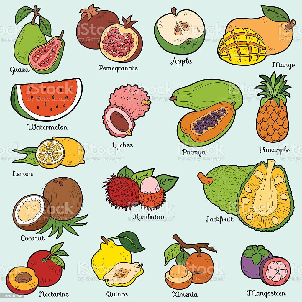 Color set with tropical fruits, vector cartoon stickers vector art illustration