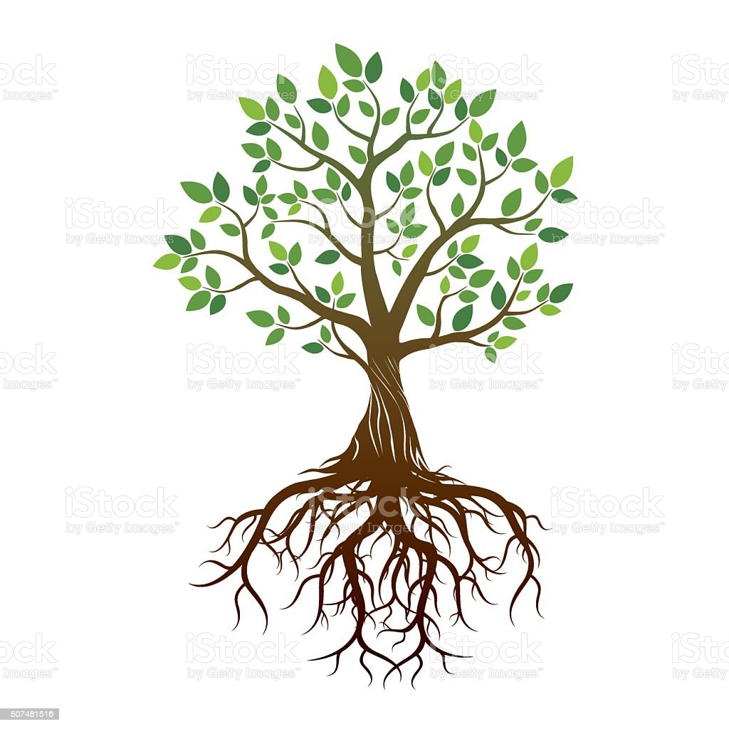 top 60 tree roots clip art vector graphics and