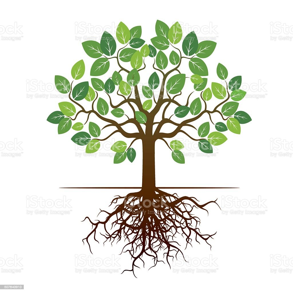 color tree and roots vector illustration stock vector art more rh istockphoto com tree with roots vector png tree with roots vector free download